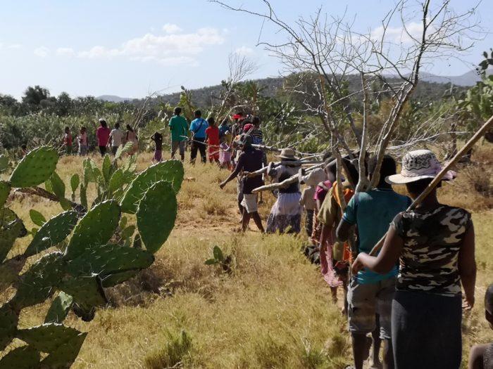 そして早速、村人と一緒に、バオバブの植林へと向かった。その場所の名前は「子どもの森」。何故「子どもの森」というかというと、単純に樹を植えるというためではなく、植林をする意味を子どもたちに伝えるために一緒に活動する場所だからとのことである。近藤先生や湯浅先生、サザンクロスの活動には頭が下がる思いである。