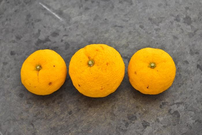 通年出回る野菜や果物が多くなってきている中で、冬にしか購入できない柚子(ゆず)。果肉だけでなく、皮もさわやかな香りと美しい彩が表現できる優れもの。その柚子(ゆず)の皮だけを使った柚子塩麹の作り方をご紹介します。