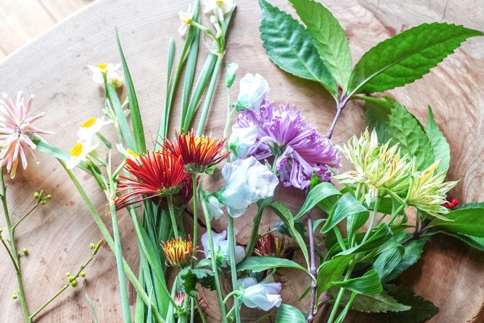 さて、年末年始のお花の準備は万全ですか?ぜひ年越しにはお花を飾って、明るく、彩りのある新年を迎えましょう!  お花屋さんの軒先も松、梅、葉牡丹など、賑やかなお花で彩られます。そして、多くの種類を必ず目にする菊。すごく長持ちすることから、「長生き」「不老不死」の象徴とも言われて縁起のいいお花の一つです。