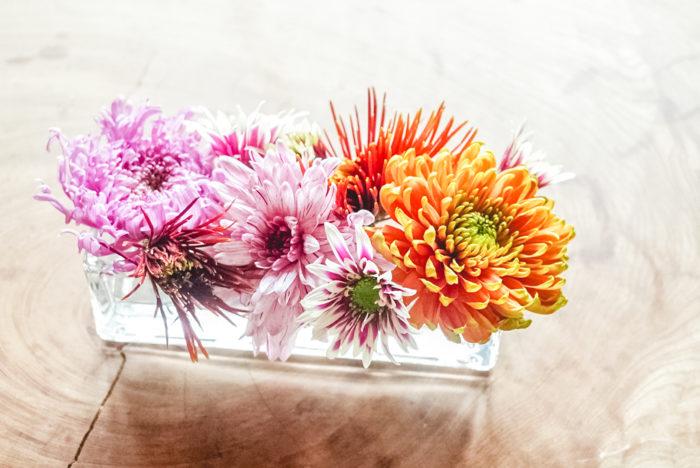 花屋さんで働いていた頃は、1年の中でもこの季節はここぞとばかりに菊を手にするお客様が増え「とっても長持ちよね!」と声をかけていただくことが多かったです。日々進化してたくさんの種類が色合いが出回る菊には魅力が詰まっています。