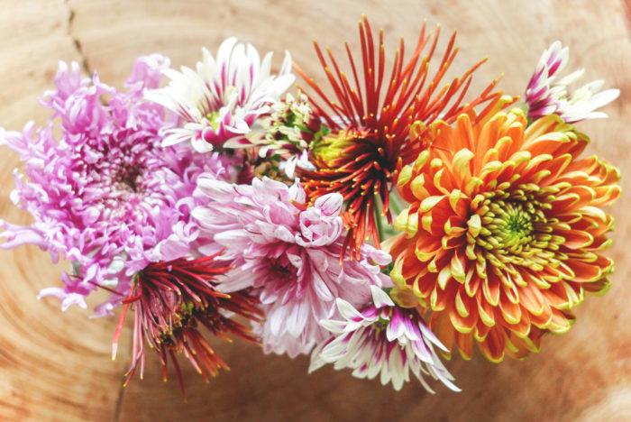 ちょうどたくさんの種類が出回るので、スプレー咲きのもの、1輪のものなど、写真のようにいくつかの菊を短く切って、浅めの器に入れてあげるととても華やかなアレンジになります。