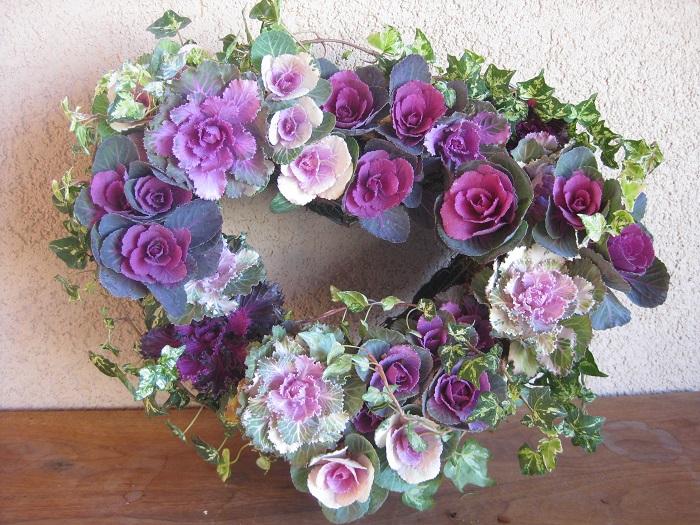これは、数種の紫色のハボタンとアイビーを使ったリースです。まるでバラのようにも見えるハボタンをリース型のバスケットに植えています。ハボタンは暖かくなるまで背丈が変わらずほぼ生長しないのでリースの形もくずれることなく、冬のリースづくりに使う花苗に適しています。  同じくプリムラも背丈が変わらずに次々と花を咲かせるので、冬のリースづくりに使う花苗に適しています。