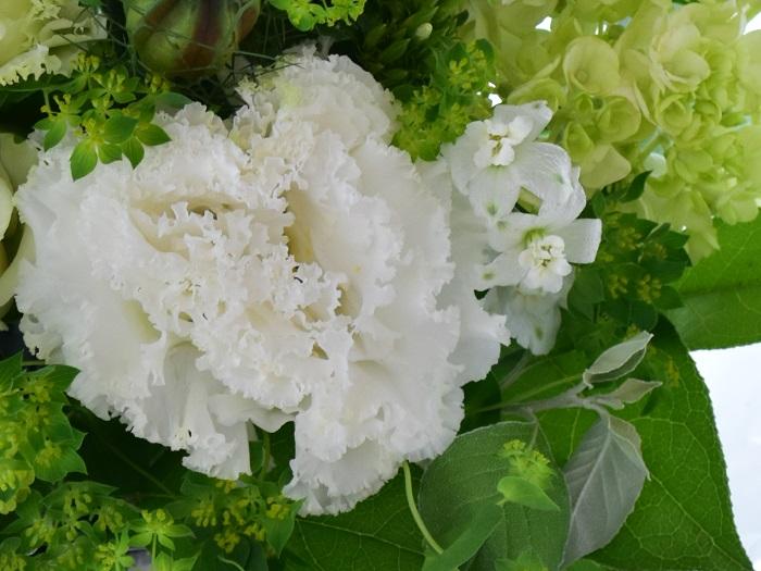 トルコキキョウは八重咲きで大きく、華やかな花です。香りや衣類に付くような花粉もなく、葬儀以外の場所でも多用されます。