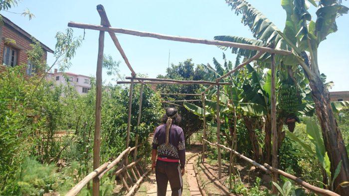 また畑でできたものの抽出液から虫の忌避剤や肥料も作っている徹底した循環農法である。聞くところによると畑の形はマダガスカルの形を模しているとのこと。