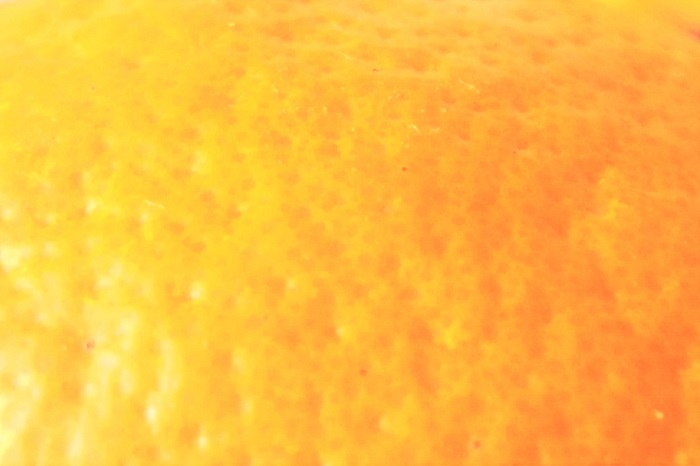 みかんの皮の特徴は、表面のつぶつぶとそこに含まれる成分です。みかんの皮を至近距離で見ると、毛穴のようなつぶつぶが見えます。みかんは無毛です。これはみかんの毛穴ではなくて、油胞というものです。  油胞の中にはリモネンなどの成分が含まれていて、みかんの果実を害虫などから守っているといわれています。リモネンはみかんを始めとする柑橘類の香り成分であり、エッセンシャルオイルにも使用されています。  試しにみかんの皮をぎゅっとつまむと、油胞から飛沫のように水分が飛び出してきます。水分にリモネンが含まれているので、辺りにふわりといい香りが漂います。目に入るとしみるので人に向けて飛ばすことのないようにしましょう。
