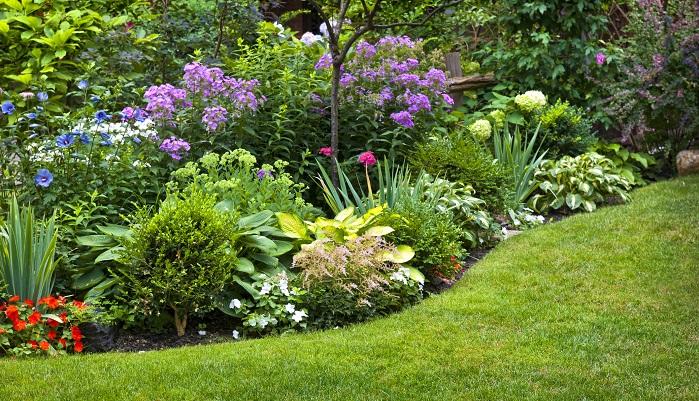 平面でのレイアウトと同時に縦の要素も重要です。手前に背の高い樹木を植えてしまうと、奥の植物たちが見えなくなってしまいます。  高木の足元には背の低い草花を植えたり、草花の中でも高低差をつけるようにしたり、景色が平坦にならないように工夫をしましょう。