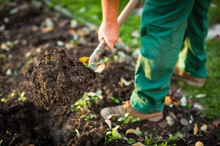 花壇は植物を育てる場所、植物にとって土は重要です。動けない植物は、光合成と土からの養分で命を繋いでいます。植物を育てるなら、栄養たっぷりで水はけの土を用意しましょう。  花壇にしたい場所の土に市販の園芸用培養土を混ぜ込むだけでも簡単な土作りができます。あとは新しい植物を植える度にその周りに植生にあった培養土を混ぜ込んでいけば、どんどん花壇の中の土が柔らかくふかふかに変っていきます。