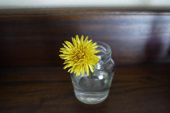 タンポポの花の咲く季節 タンポポの花の咲く季節は春から秋です。タンポポの花は、3月くらいから咲き始め、夏の暑い時期は休み、秋にまた咲きます。冬でも日当たりの良い場所などで花が咲いているのを見かけることがありますが、多くのタンポポはグリーンの葉を広げ、静かに越冬します。