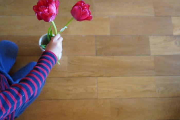 4歳になった息子もピンクのチューリップがお気に入りです。あなたもお気に入りの1輪が見つかりますように。