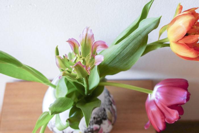 チューリップの選び方 お花屋さんで春のお花と並んで咲いている姿もとても可愛いですよね。開いている方が大きく見えますが、チューリップは生けてからも生長していくので、小ぶりな蕾に近い方が、お家でも長く楽しめます。チューリップを購入する際には、花と葉の距離が近くて、茎が長く伸びすぎていないものが新鮮な証。こちらを参考にして選んでみてください!