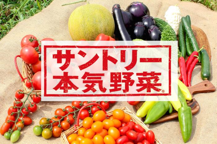 """サントリー本気野菜は、サントリーフラワーズが """"食べてみたいを育てよう。"""" をコンセプトにつくりやすさに拘り、とっても美味しく、見た目の表情も豊かな品種をお届けしようと開発した育てやすい野菜苗シリーズ。  家庭菜園向けに、日本の気候や環境にマッチして育てやすく、日本人に好まれる味覚を備えた品種の野菜苗たちです。サントリー本気野菜の苗は、初心者の方でも収穫までたどり着けるようにとても丈夫でしっかり根が張るので、畑はもちろん、プランター栽培でも安心。初めて家庭菜園にチャレンジする人におすすめなだけでなく、毎年リピーター購入する人も多い大人気の野菜苗シリーズです。  これからご紹介する、サントリー「本気野菜」の中でも人気のトマト、キュウリ、ピーマンをLOVEGREEN STOREで販売します。ECサイトで購入できるのはここだけ!"""