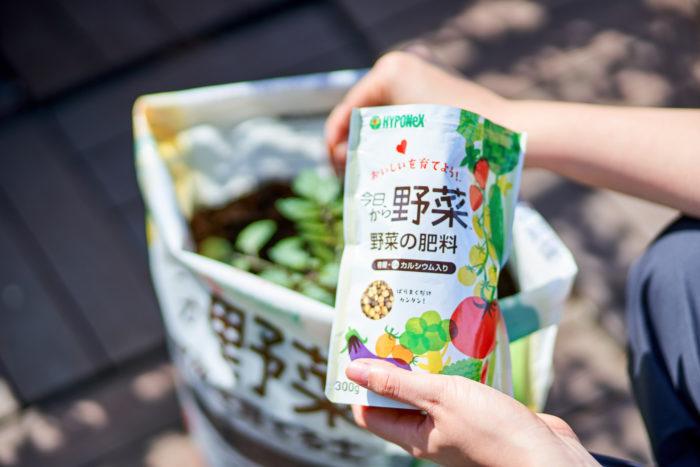 ⑤植えつけたあとは「今日から野菜 野菜の肥料」を与えます。
