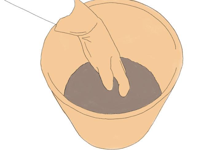 まずは、鉢に土を半分程度まで入れます。バラは根が下に伸びるタイプが多いため、深さのある7号サイズ(直径21㎝)程度の鉢がおすすめです。  この際、元肥としてゆっくり長く効く粒状タイプの肥料を適量土に混ぜ込んでおきましょう(元肥入りのバラ専用培養土なら不要)