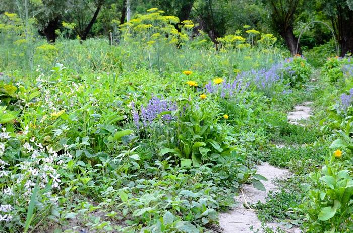 インフォーマルガーデンは、フォーマルガーデンの反対にあるスタイルです。自然の景色と調和するような庭、野趣あふれる庭を指します。  インフォーマルガーデンでは人工的なマテリアルを避け、木材やアンティークレンガなどを使って自然に溶け込んでゆくように意識します。
