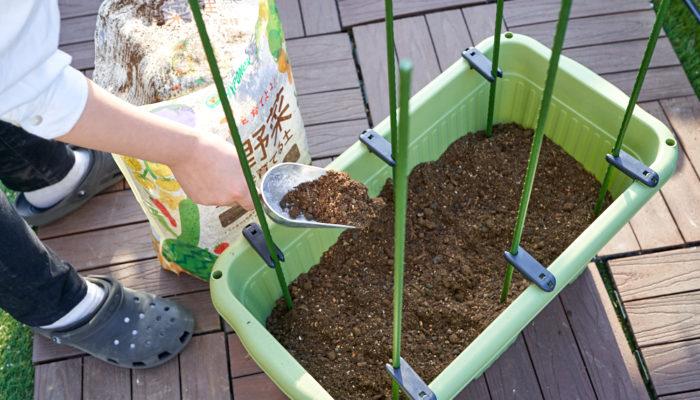 本気野菜ミニトマト純あまで育てるプランター家庭菜園の植え付け土
