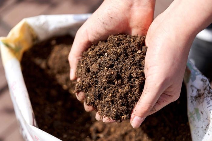 風で倒れにくいように重たい配合にしている土なので、袋のまま育てることもできるんですよ!(袋栽培の方法については後ほど詳しく紹介します♪)