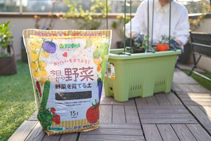 本気野菜ミニトマト純あまで育てるプランター家庭菜園の土