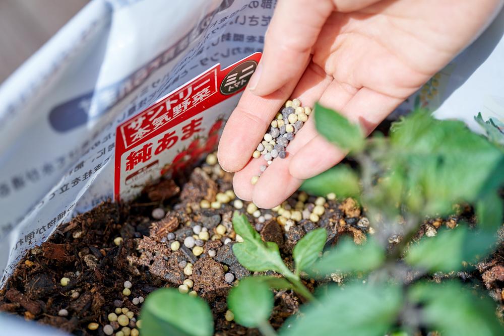 野菜の生育に必要な成分と有機成分をバランスよく配合しているため、美味しい野菜の収穫を目指せます。また、ゆっくり長く効き続けるので肥料不足を起こさず、野菜が元気に育つので安心です。  ペットボトルの蓋1杯分=約5グラムなので目安の参考にしてみてください。  ※今回は植え付け作業のため手袋をしていますが、肥料自体は素手で触っても問題ありません。