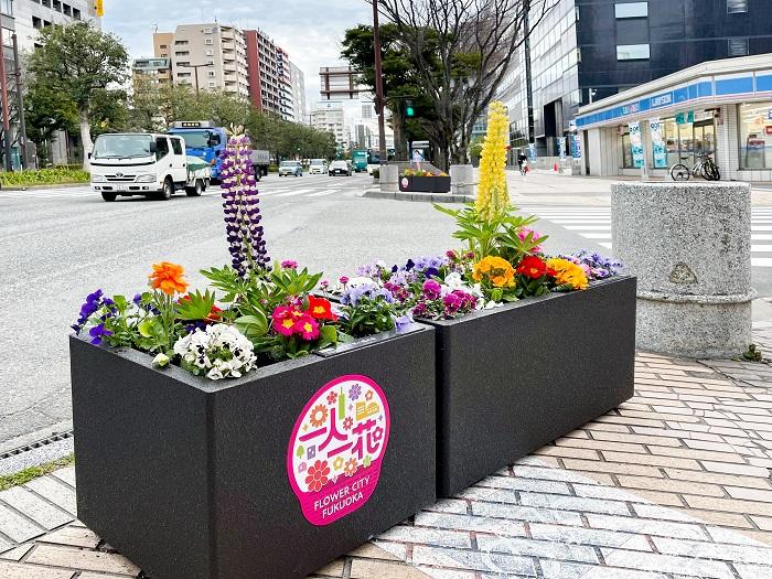 2年後には1,000基のフラワーポットに植えられた花が、福岡の街を彩る……、想像しただけでわくわくしますね♪