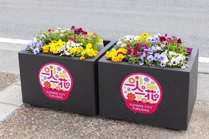 花によるまちづくりに取り組む福岡市の「「一人一花運動」では、市内を彩るフラワーポットを一新。デザイン/機能ともに進化した新型フラワーポット約1,000基を、今後2年間かけて市内の幹線道路に設置予定です。新型フラワーポットは大小2つのサイズがあり、小サイズのほうには、「一人一花」のロゴが入っています。