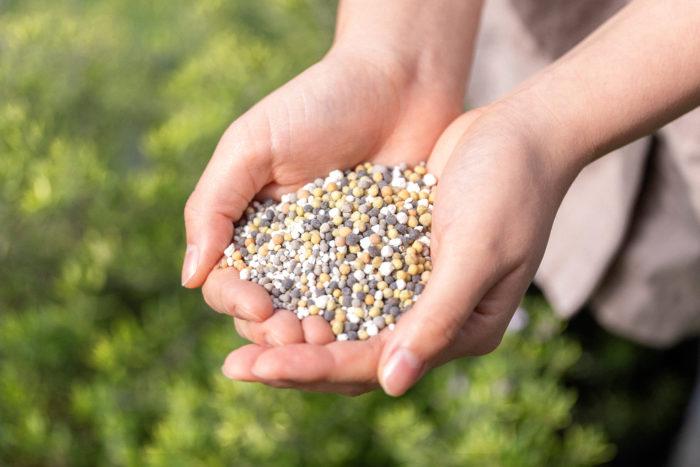 なぜ肥料を使うの?肥料の成分ってなに?