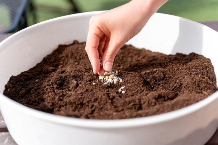 「Plantia 花と野菜と果実の肥料」を元肥として土に混ぜ込みます