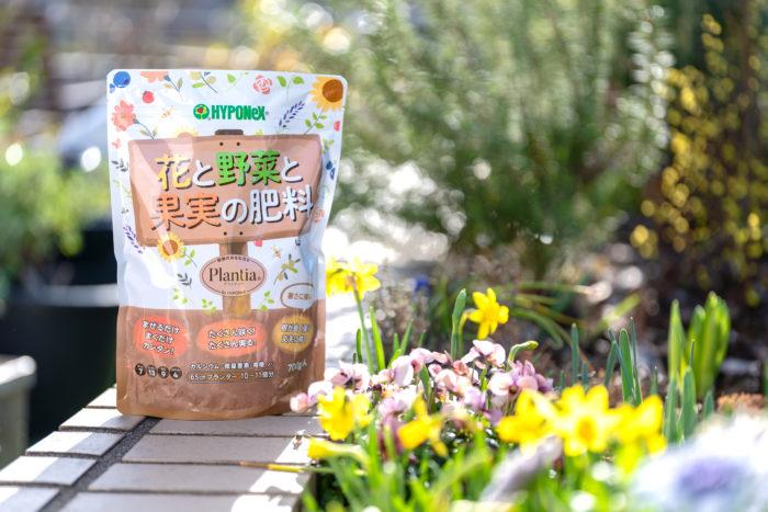 実際に「Plantia 花と野菜と果実の肥料」を使ってみました!