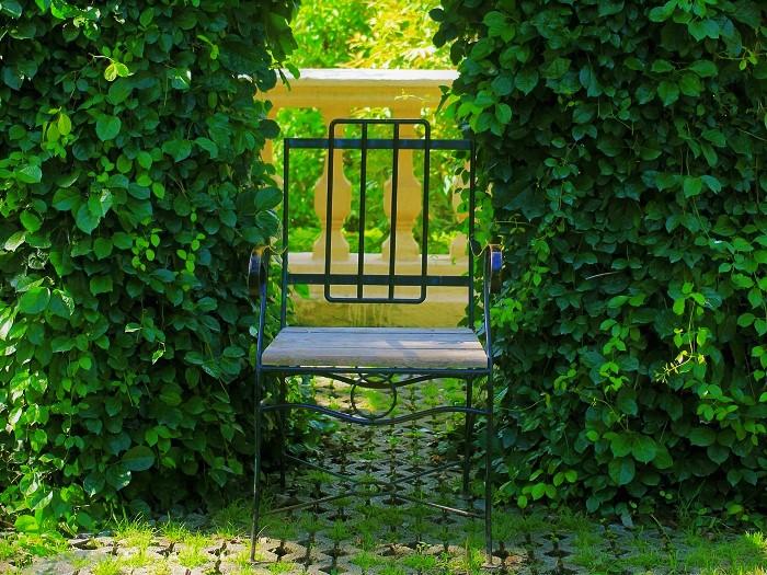 シェードとは日陰のことです。庭に設置する日除けを指して、シェードと呼ぶことがあります。また、日が当たりにくい庭をシェードガーデンと呼ぶこともあります。
