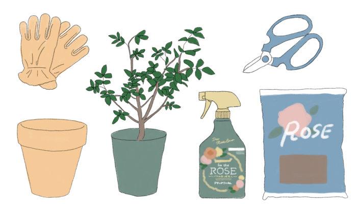 ・バラ苗  ・鉢(鉢栽培の場合)  7号(直径21㎝)ぐらいの深い鉢がおすすめです  ・土  バラの専用培養土がおすすめです  ・剪定鋏  バラの花を切ったり、枝の剪定に使います  ・厚手のゴム手袋か皮手袋  手入れの際にバラのトゲから手を守ります  ・病害虫対策用の薬剤  病気や害虫からバラを守る必需品です