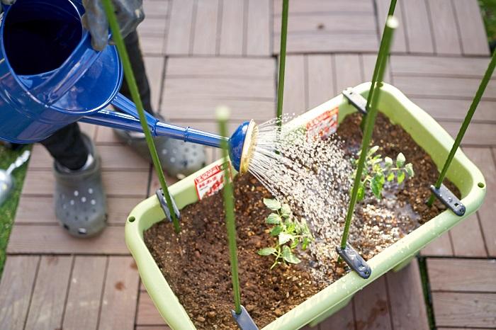 いざ、「家庭菜園を始めよう!」となっても、プランターや土は何を選べばよいのかわからないということもしばしば......。 そんな方に、LOVEGREEN STOREがおすすめの初めてでも育てやすいプランターと土、肥料、支柱をセットにしてご用意しました。 土と肥料は、ハイポネックスジャパンさんから今春新登場した、本気野菜の苗と相性ぴったりのシリーズ「今日から野菜」をセットしています。 サントリー本気野菜のパフォーマンスを最大限引き出すように開発された土と肥料なので、相性抜群の組み合わせです! これを揃えていれば、スタートは何も心配なし!