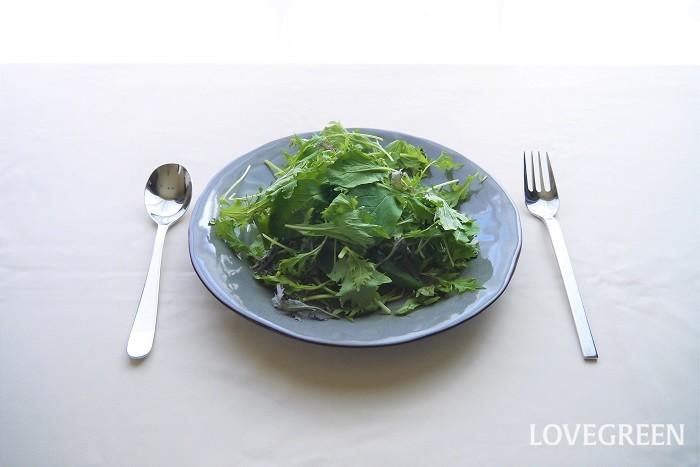 ヴィーガンが食べるものは、動物性ではない食べ物です。野菜、豆類、穀物などを食べます。ナッツ類や果物も食べます。卵、乳製品が使用されていないパンも食べます。その他、砂糖や醤油、味噌、酢、植物油、アルコール類、野菜の出汁なども食べます。  野菜や穀物が原料であっても、加工時に動物性のものを使用している食べ物は食べません。ドレッシングなども材料によっては避けます。