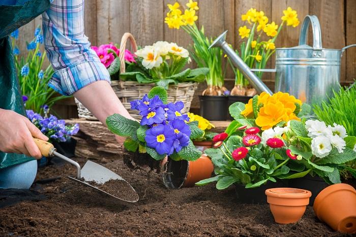植物や土に触れると自然に心が安らぎ、肩の力も抜けてリラックスできます。お家周りの空きスペースに、手入れが簡単なグランドカバープランツを植えると家全体がナチュラルな雰囲気になるのでとてもおすすめです。