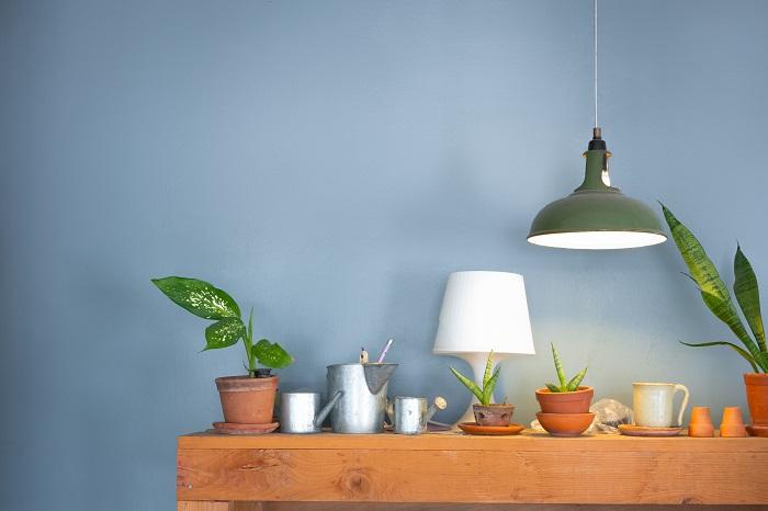 小さい観葉植物を室内の明るい場所に並べて、お気に入りの癒し空間をつくってもオシャレに楽しめますね。植物を置くスペースがとれないときは、プラントハンガーを使って吊るして飾るのもおすすめです。