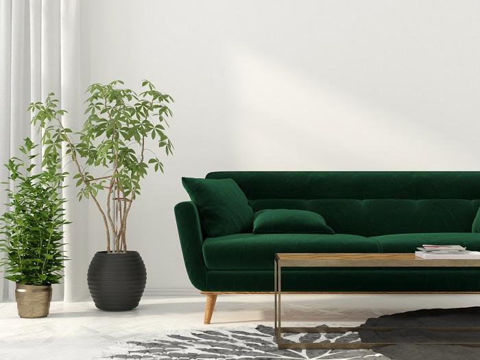 植物はインテリアにもなり、部屋に置くと明るくオシャレな雰囲気が出来上がります。家にいる時間が快適で楽しくなるのではないでしょうか。大きめの観葉植物を一つ置くだけで、その場が癒しの空間に変わります。