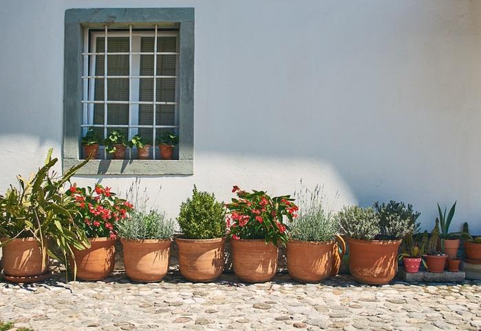 ガーデニングをすると、庭が家周りが明るくきれいなり、家に帰ってきたときに嬉しい気持ちになります。道行く人の目も楽しませることができ、植物好きな人と会話がはずむことも。お住いの地域の雰囲気も明るくなるのではと思います。  玄関前に寄せ植えを一鉢置くだけでも、その場に好みの景色をつくることができます。
