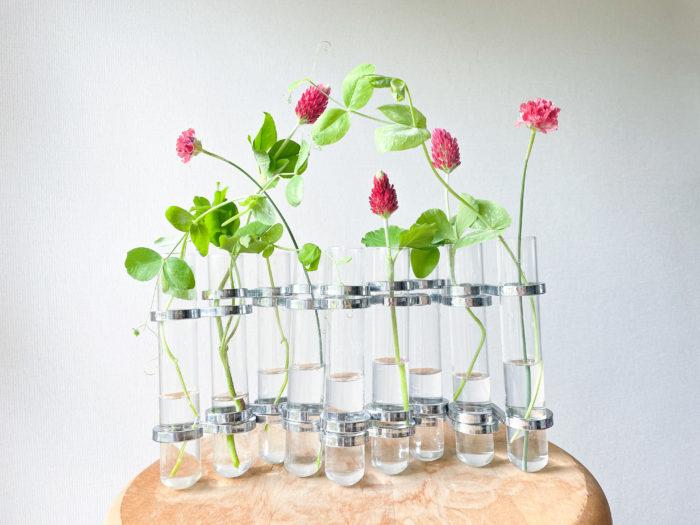 アルメリアはスッと伸びる茎が魅力的なので、茎の流れが自然な向きで生けています。