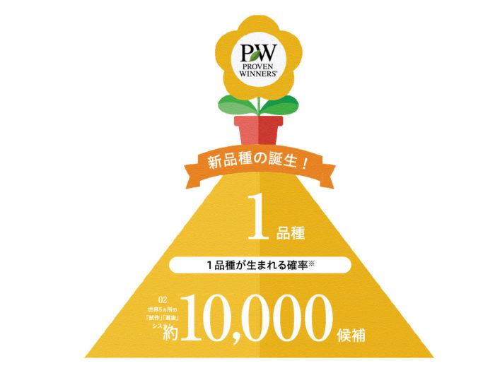 PWブランドとして世に出るのは1万分の1品種!
