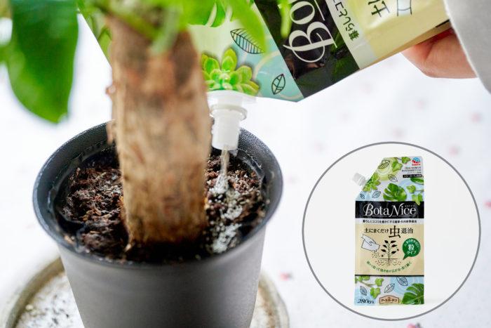 観葉植物の虫対策に「BotaNice 土にまくだけ虫退治に