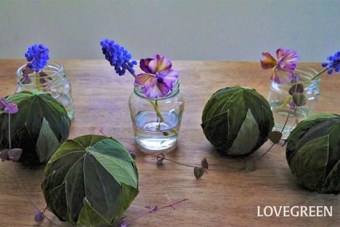 自宅で楽しむ切り花の生け方にルールはありません。ジャムやドリンク剤の空き瓶に、庭で摘んだ1輪の花を生けるだけでも十分に楽しめます。