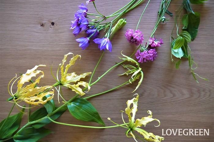 切り花がどれくらい長持ちするかは、一概には何とも言えません。1週間以上きれいな花もあれば、2~3日で萎れてしまう花もあります。  種類や季節によっても差があります。同じ種類の花でも諸条件により違ってきます。切り花の寿命は、花それぞれです。  花は生き物です。切り花であっても植物というのは人間の思い通りにはならないものだと理解しておくことが大切です。  長く楽しむことだけでなく、切り花の一瞬の美さ、華やかさも楽しんでみてください。1輪の花のエネルギーを感じてみてください。その香りまで満喫してください。