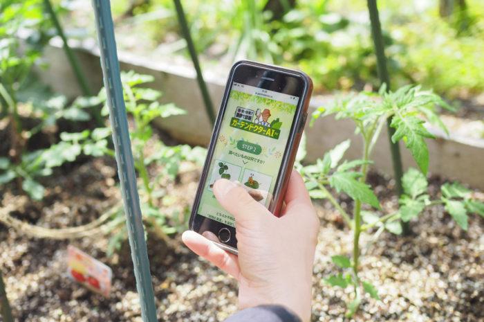 植物の病害虫を写真で自動診断!「ガーデンドクターAI(アイ)」