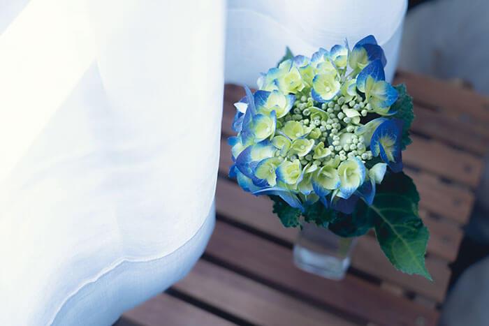 しとしとと雨が降り続く梅雨の時期によく目にするアジサイ。青や紫、ピンクなどカラフルな花を咲かせ、私たちの気持ちをパッと明るくしてくれます。  一見、花弁に見える部分は実はガク。あじさいの花は、ガクの中央に位置している小さい丸い部分です。