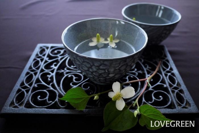 ドクダミ茶は名前の通りドクダミのお茶です。乾燥させたドクダミを使用します。ドクダミは乾燥させると特有の臭気が消えるため、お茶として抵抗なく飲めるようになります。  ドクダミ茶の作り方 とっても簡単なドクダミ茶の作り方を紹介します。  用意するもの ドクダミ全草を好きなだけ 物干し用のピンチハンガーなど 作り方 花が咲き始めた頃に草むしりがてらドクダミを刈り取る 刈り取ったドクダミをよく洗って水気を切る 少量ずつピンチに吊るす(欲張ってたくさん吊るすと中がカビてしまうので少量ずつ) 風通しのよい日陰で数日干す 触ってみて崩れるくらいパリパリに乾燥していれば完成 密閉容器に入るサイズに切り分け保存する ドクダミ茶の楽しみ方 小鍋に湯を沸かし乾燥させたドクダミを入れて10分くらい煎じる カップに注いで召し上がれ