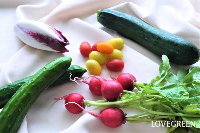 夏野菜の色 夏野菜の魅力は何と言ってもその色です。夏の太陽をいっぱいに浴びて生長した夏野菜たちは、どれも色鮮やか。見ているだけで食欲をそそります。  夏野菜の味 夏野菜は水分を多く含んでいるものが多く、瑞々しいのが特徴です。また、夏の強い陽射しを浴びて光合成をしっかり行っているので、糖度が高く味が濃いのも特徴です。さらに、生で食べられる種類が多いのも夏野菜の魅力です。  夏野菜の栄養 色鮮やかな夏野菜は、カロテンやビタミン類がたくさん含まれています。カリウムなどのミネラルも豊富です。夏バテ予防に良いと言われているもの納得です。