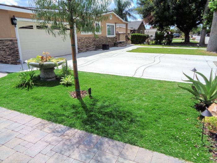 クラピアでつくる、お庭に広がるナチュラルで美しいグリーンカーペット
