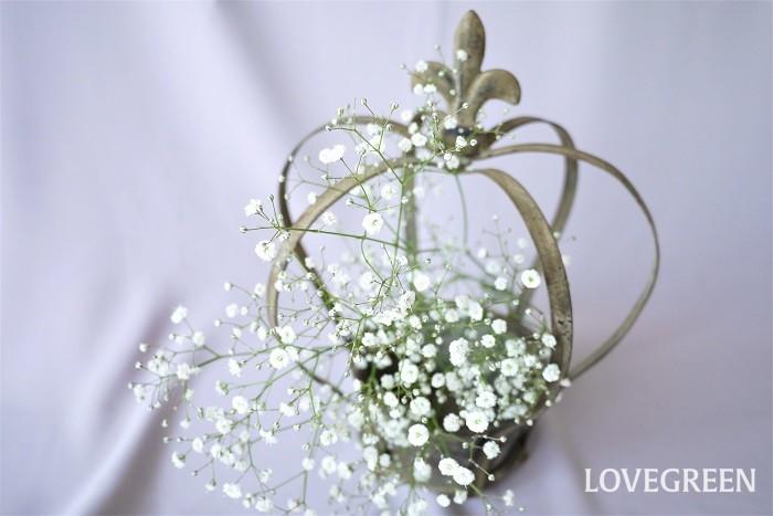 かすみ草の花言葉を紹介します。  無垢の愛 感謝 幸福 かすみ草の清楚な花に良く似合う、優しい花言葉です。  かすみ草の英語の花言葉 Purity of heart(純粋な心) Innocence(無垢、無邪気) どちらもきれいな花言葉です。
