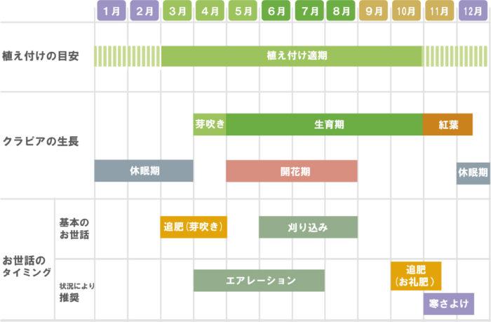 クラピアの育て方カレンダー