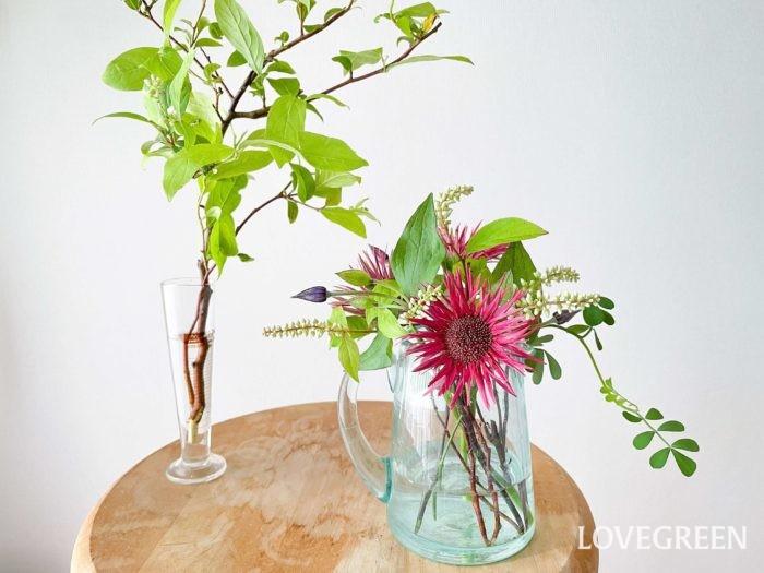 ガーベラは茎が柔らかく、水に浸かると傷みやすいので、花瓶の中の水は浅めにします。出来るだけ毎日、茎を切り戻してあげるとしっかり長持ちしますよ。