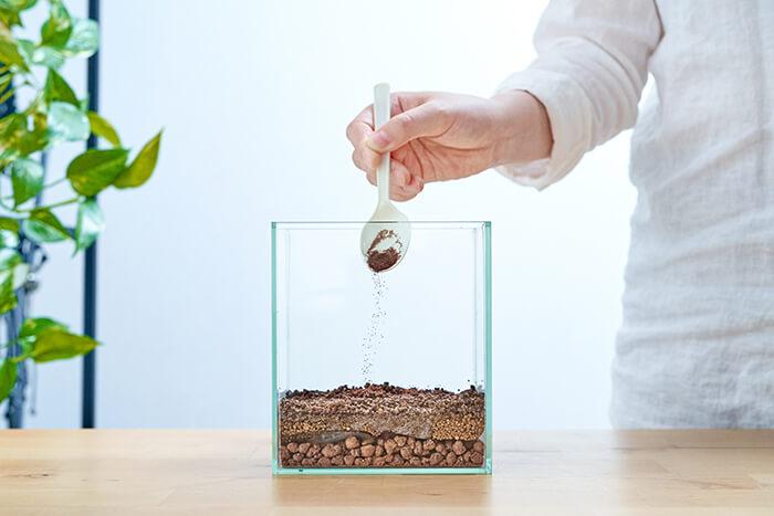 水草のタネを水槽一面にまきます。スプーンを使うとまきやすいですよ♪