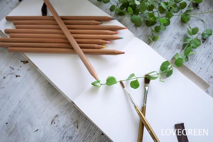 ボタニカルアート(Botanical Art)とは植物学の絵画、つまり植物学的見地から描かれた絵のことを言います。まだ写真がなかった時代に図鑑のために描かれました。  ボタニカル(Botanical)には「植物学の」という意味があります。ボタニカルアートは絵を見ただけで何の植物かわかるように、花だけでなく茎や葉、トゲ、根に至るまで微細に描かれいます。単なる写生ではなく、1種類の植物の特徴を捉えて、その姿を精確に写した絵です。  もちろん現代でもボタニカルアートは健在です。楽しみのためや、自身の学びや記録のために描くのもよいでしょう。ボタニカルアートのワークショップなども行われています。ボタニカルアートにチャレンジしてみるのも楽しそうです。